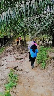 koto kampar hulu, kab. Kampar, Riau