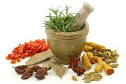 Manfaat tanaman herbal pada hewan ternak unggas