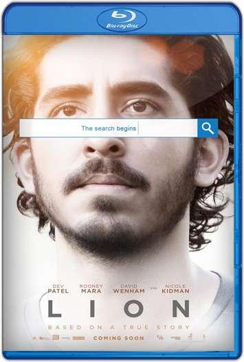 Un Camino a Casa (2016) HD 1080p y 720p Latino