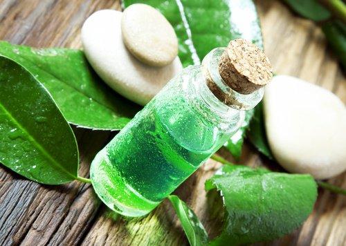 L'huile d'arbre à thé