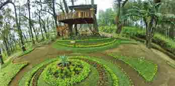 5 Rumah Pohon di Malang Wisata Keren Indah Mengagumkan dan Romantis