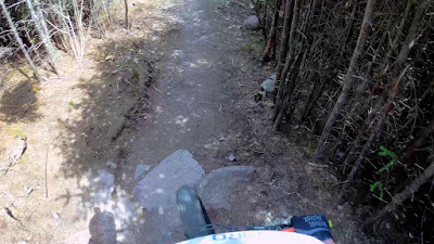 Fatbike Crash and Safety