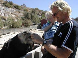 Cyprus donkey sanctuary