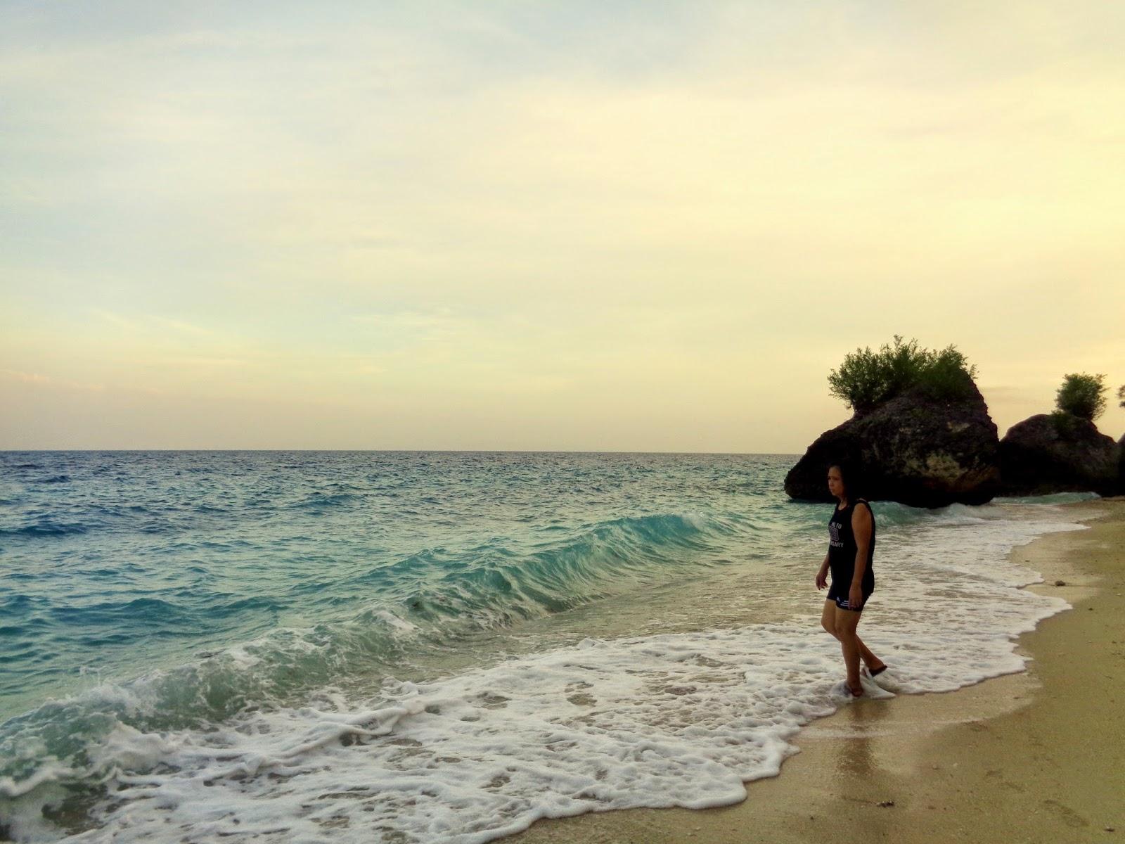 seafari resorts in oslob