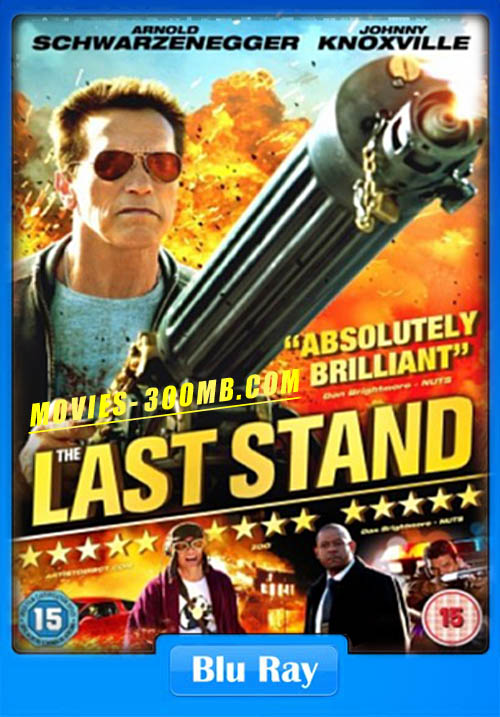 The Last Stand 2013 Dual Audio BRRip 720p Poster