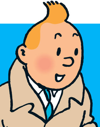 My hair sometimes resembles Tin Tin's.
