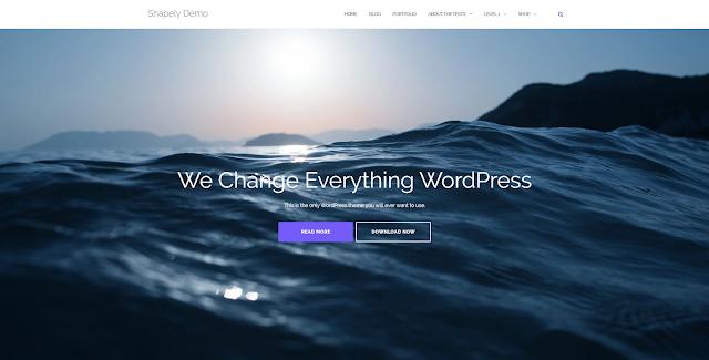 motywy Wordpress biznes