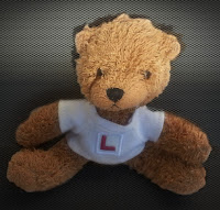 Teddy Bear with L Plate T Shirt