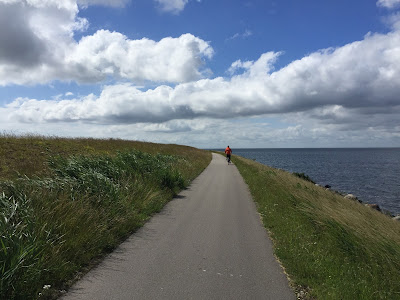 Bike ride around Amager Island.
