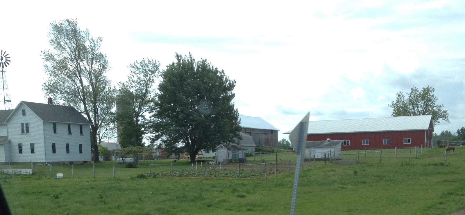 Amish horses amish farm tour for Amish pole barns indiana