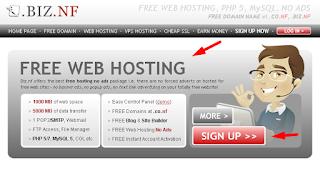 Biz NF penyedia hosting gratis