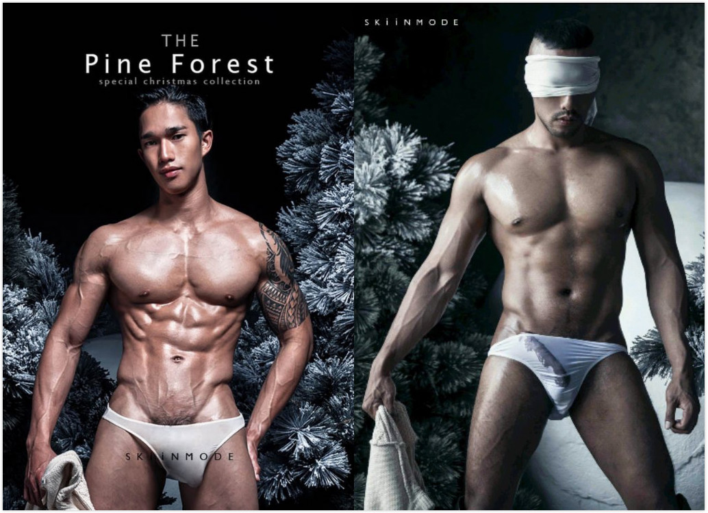 The Pine Forest | Special Christmas Collection