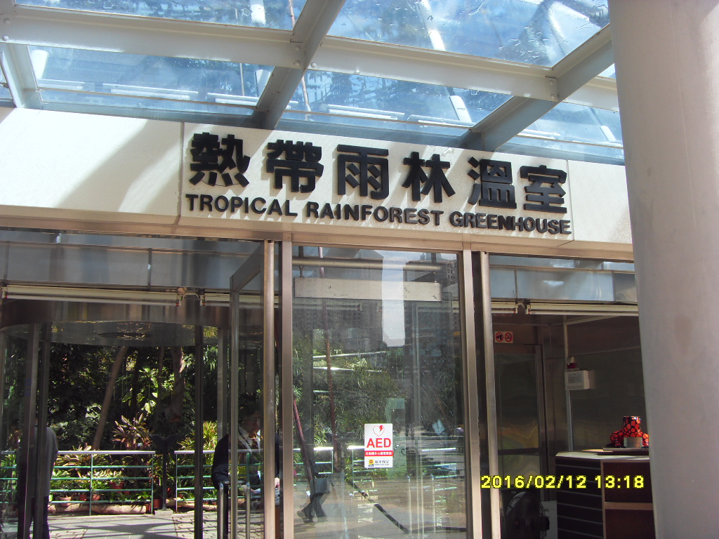 Peter's Blog: 國立自然科學博物館植物園的蕨類植物