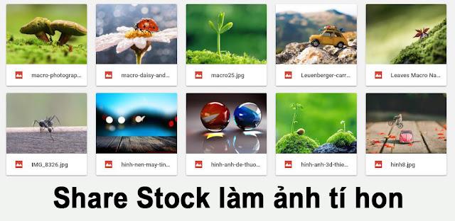 Share bộ Stock dùng làm ảnh tí hon