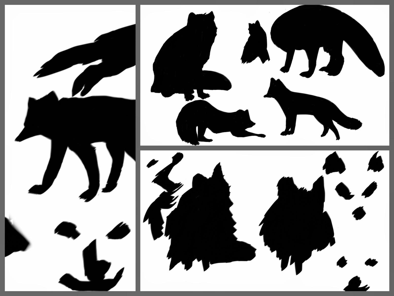 Arctic Fox Silhouette