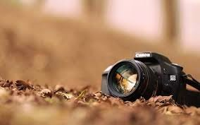 Photography, Camera, Photos, Pictures