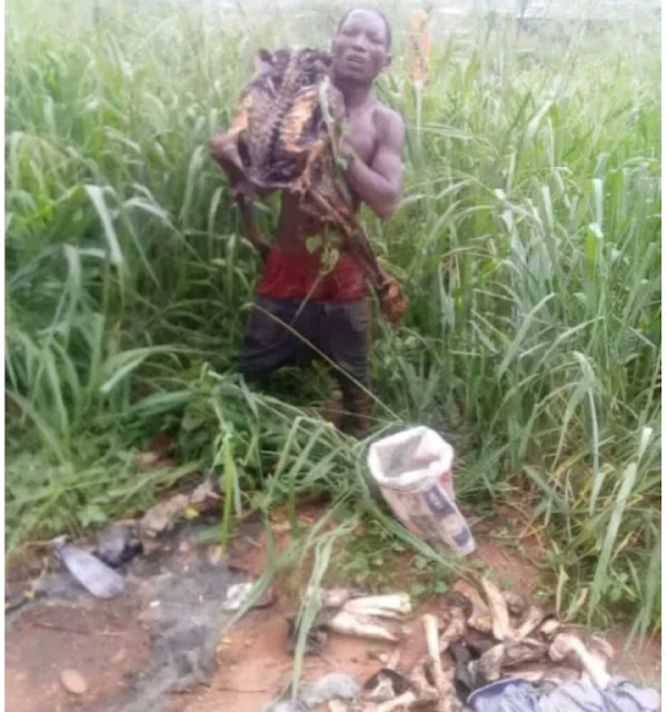 car wash attendant  nabbed with human skeleton in Ibadan