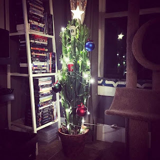 Gatos vs. árboles de Navidad