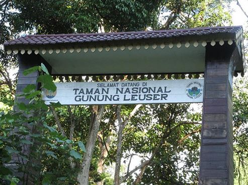 Gunung Leuser National Park the fascinating Attraction in Aceh