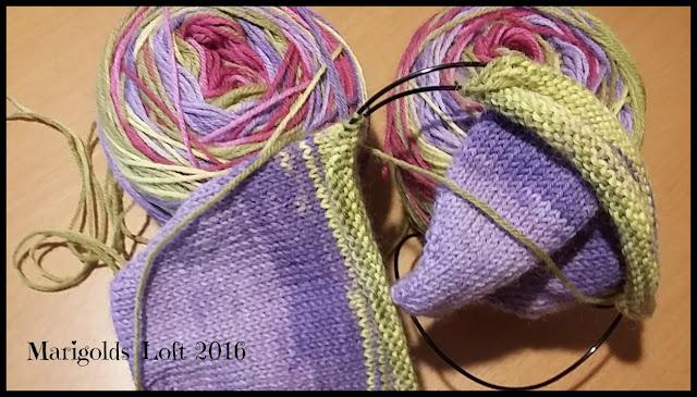interim socks no. 2