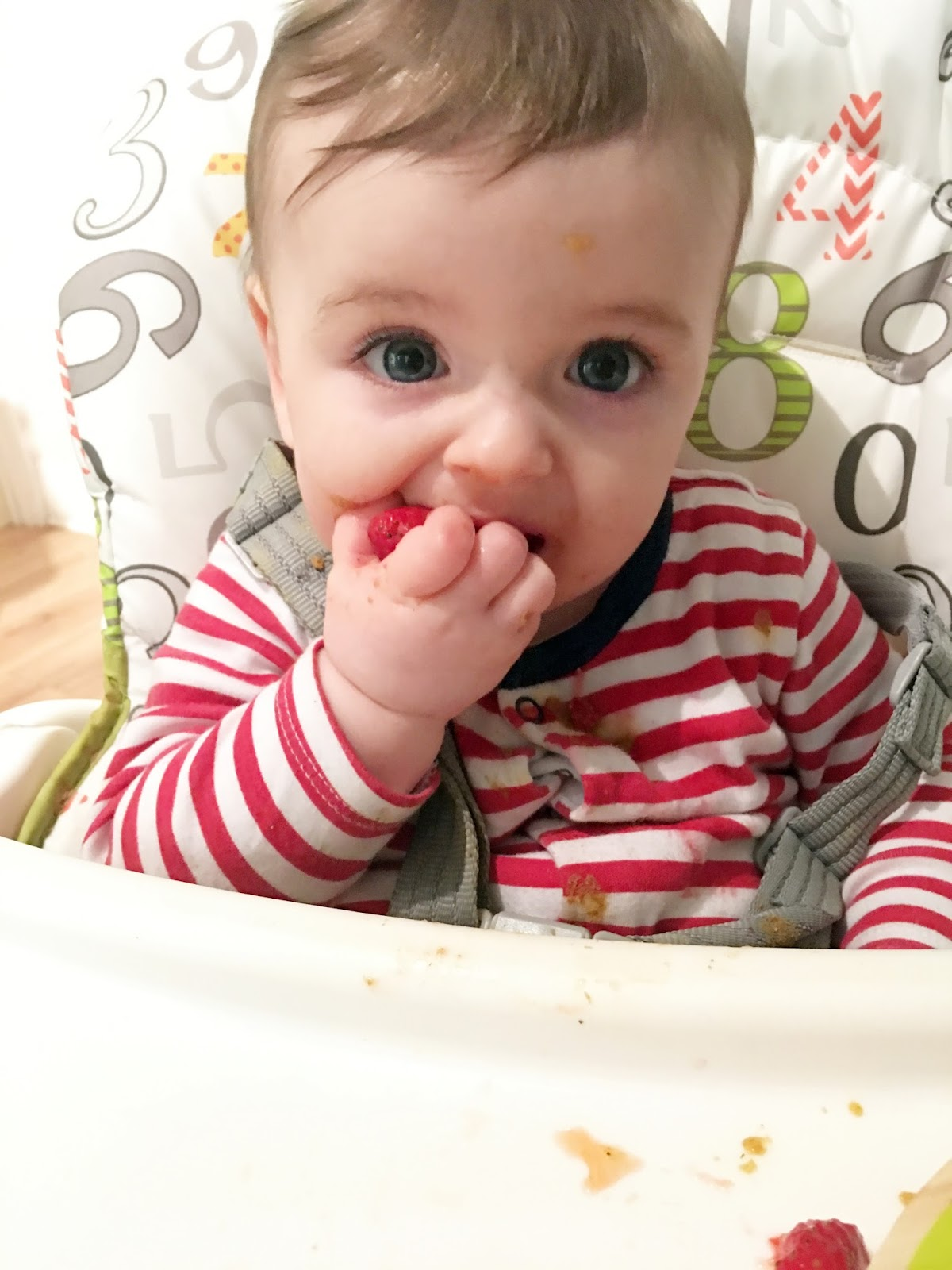 Baby seven month update1