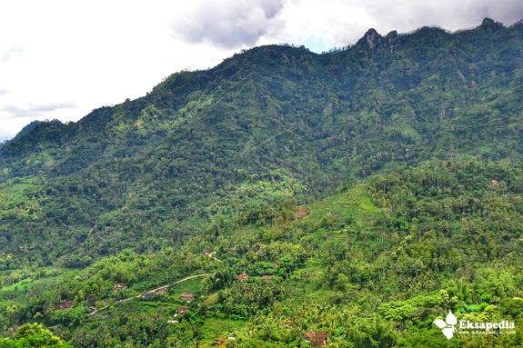 Bukit Punthuk Sukmojoyo