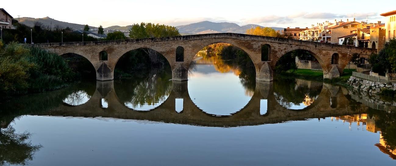 """El Camino de Santiago desde Asturias: """"El Txori de Puente la Reina"""""""