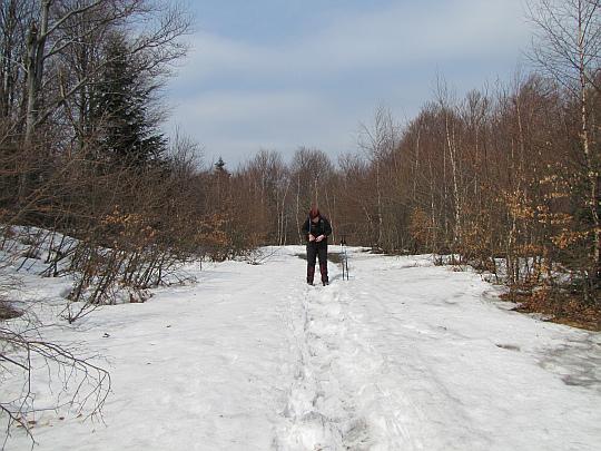Droga leśna nr 1 pod stokami Magury.
