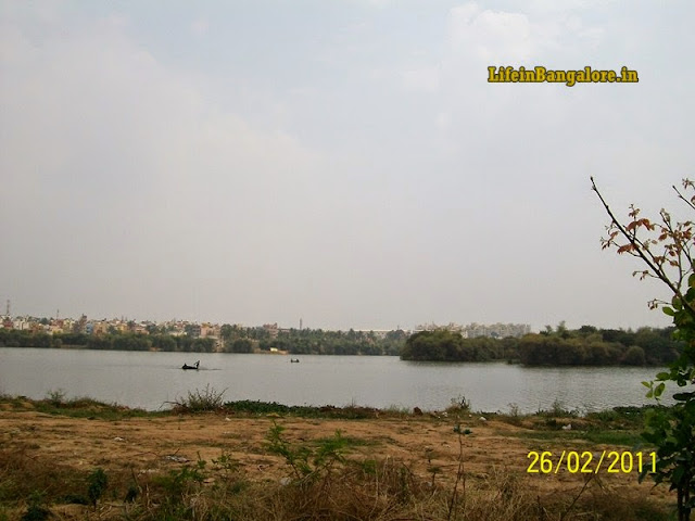 Madivala BTM Layout Lake