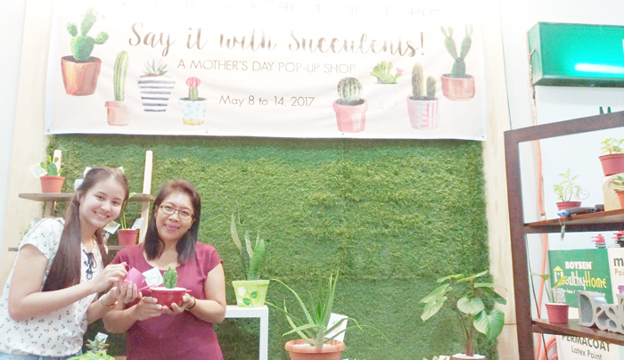 MOTHER'S DAY CREATIVE AND PRACTICAL GIFT IDEA: SAY IT WITH SUCCULENTS