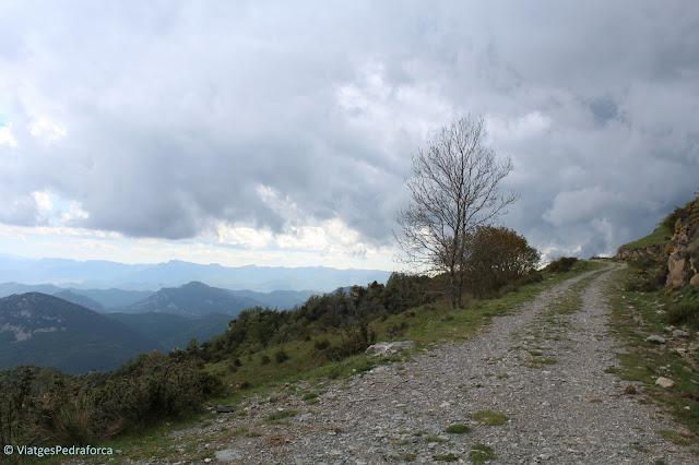 Puig de Comanegra, Puig de les Bruixes, ruta senderista, natura, Girona, Catalunya, Montagut i Oix