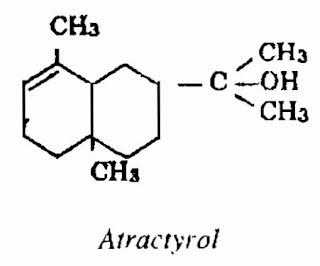 Thành phần hóa học Bạch Truật - Atractylodes macrocephala - Nguyên liệu làm thuốc Chữa Bệnh Tiêu Hóa