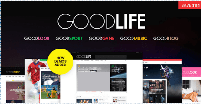 GoodLife  wordpress theme review  5+ Best SEO Friendly WordPress Themes 2016
