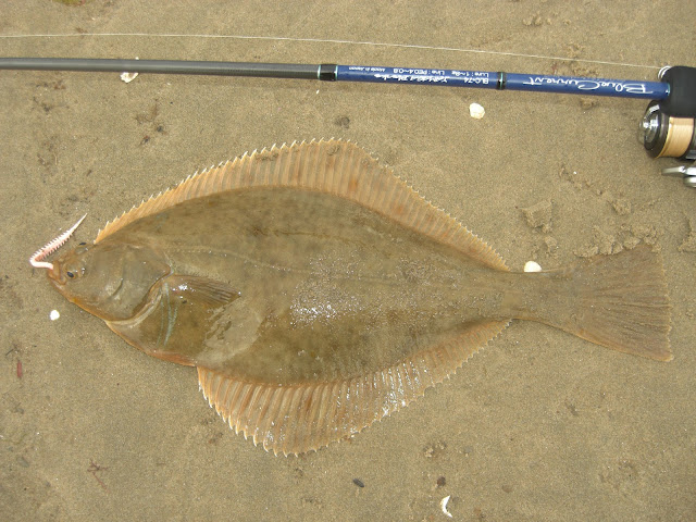 Flatfish on Lures
