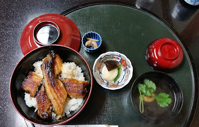 Unagi donburi (grilled eel) in Oyabe