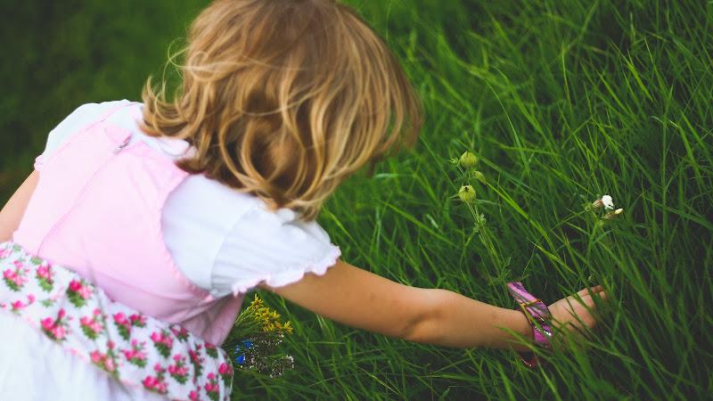 Little Girl Gather Flowers