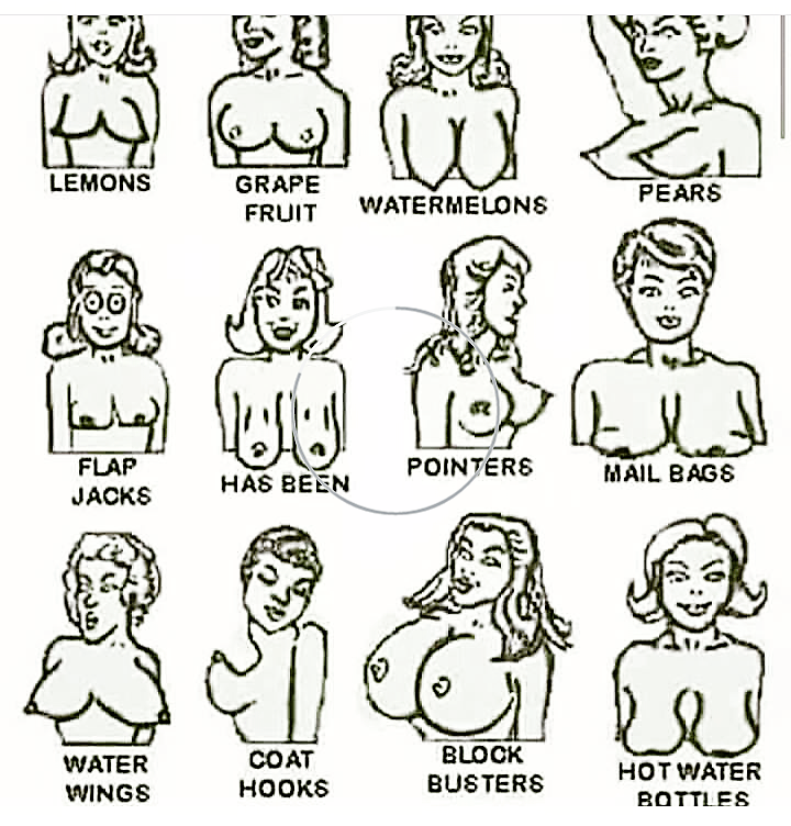 Types of sexy boobs