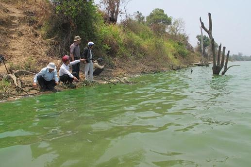 Gia Lai: Sông Ba bị 'đầu độc'