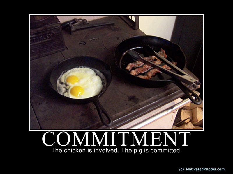Commitment Vs Involvement: Advice About The UGA Admission Process: Commitment Deposit