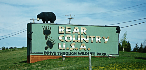bear country usa south dakota