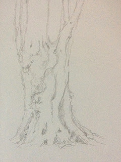 step 1, creating a charcoal sketching of a tree by Manju Panchal