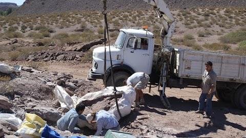 A gigászi dinoszauruszok egy eddig ismeretlen ősének maradványait tárták fel Brazíliában