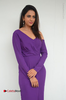 Actress Rakul Preet Singh Latest Stills in Beautiful Long Dress  0046.JPG