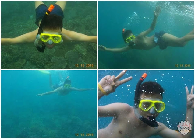 Alek snorkeling journeyofalek.com