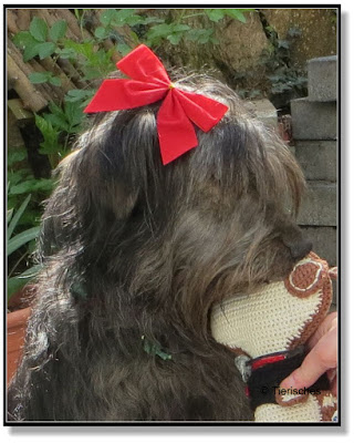 Lotte kuschelt mit Snoopy