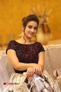 Actress Anchor Manjusha Pictures at Babu Bangaram Success Meet  0106.JPG