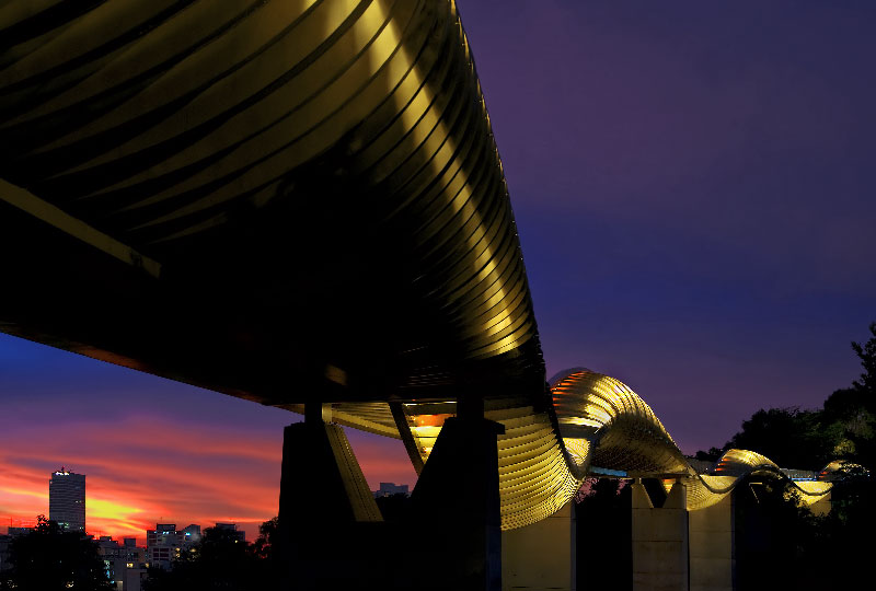 Henderson Waves Bridge di Singapore