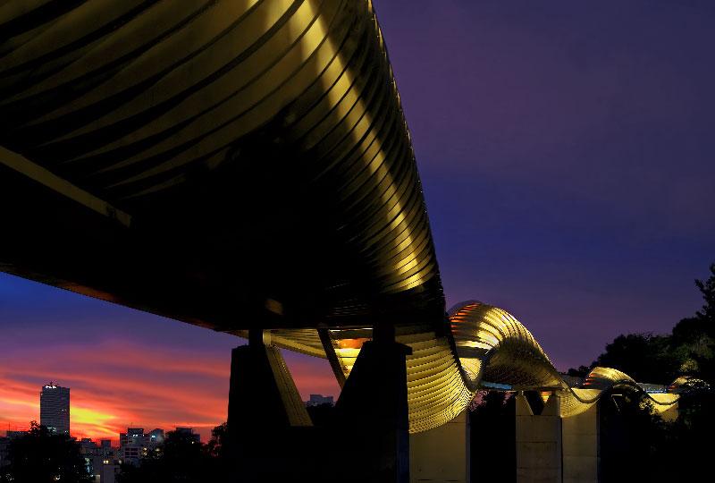 Henderson Waves Bridge di Singapore