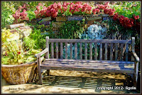 Garden bench with colorful flowers and container garden