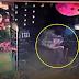 (Video) 'Anak Saya Hampir Diculik Lelaki Kulit Gelap!'